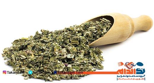 Fraxinus-excelsior-tea