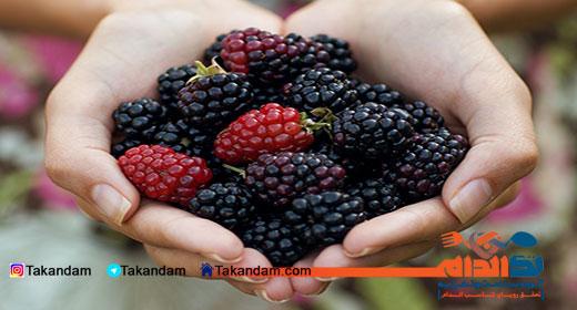 blackberry-benefits-3
