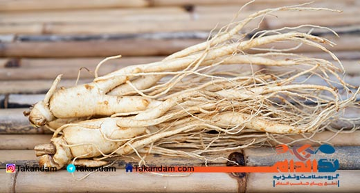 ginseng-benefits-fresh-ginseng