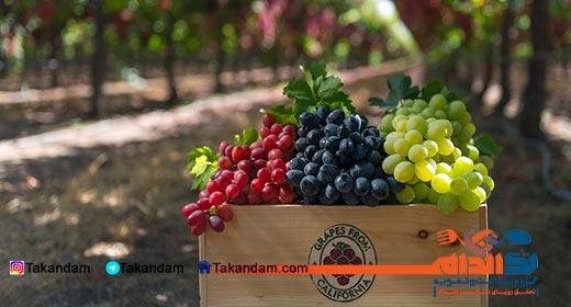 grape-diet-4