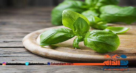 how-to-get-rid-of-kidney-stone-basil