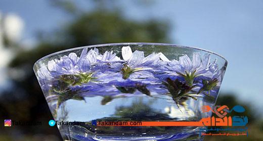 sekanjabin-chicory-benefits-drink